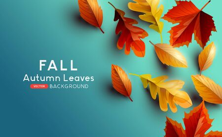Red and golden coloured Autumn leaves on a blue background. Vector illustration. Vetores