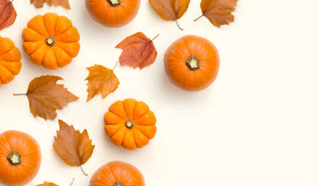A contemporary Autumn frame background with pumpkins and fall leaves. 写真素材