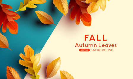 Autumn season background with falling autumn leaves and room for text. Flat lay Vector illustration  イラスト・ベクター素材