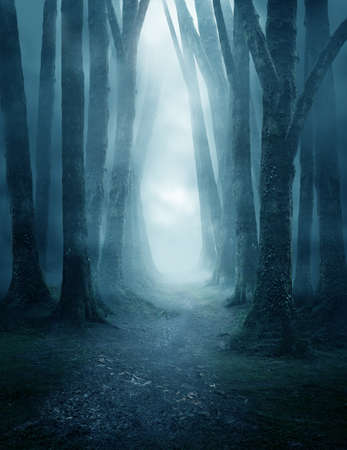 A dark and moody forest pathway covered in mist. Photo composite. 写真素材