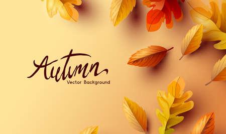 Golden Autumn fall background with of seasonal leaves. Vector illustration. Ilustracja