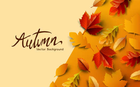Autumn fall season background design with golden falling autumn leaves and room for copy text. Vector illustration Ilustracja