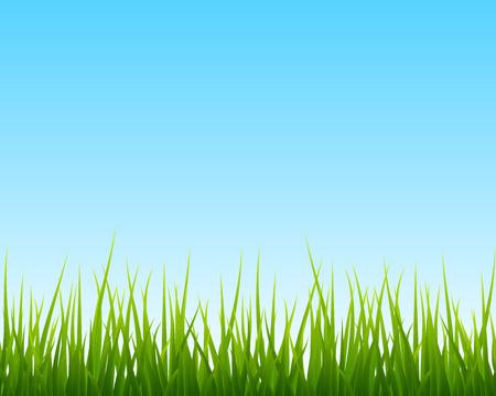 green grass and blue sky: little green grass, blue sky seamless background, vector illustration