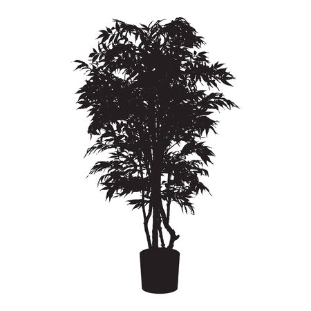 house plant: Office and house plant silhouette. Illustration