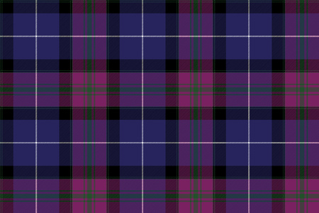 Pride of scotland tartan fabric texture seamless pattern .Vector illustration.