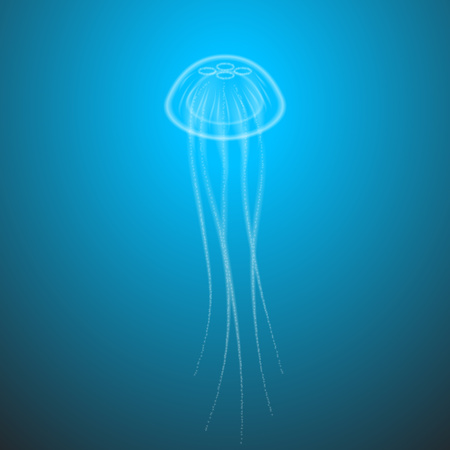 sealife: Marine life jellyfish with tentacles transparent underwater.