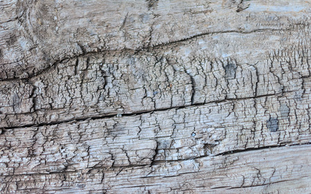 wooden beams: texture of the old wooden beams photo