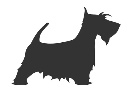 Scotch terrier silhouette breed dog simple black white. Vector illustration.
