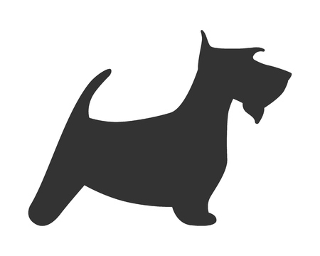 Scotch terrier silhouette dog puppy breed simple icon. Vector illustration. 일러스트