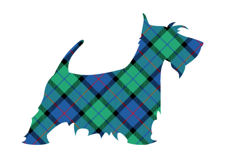 Scotch terrier tartan national pattern flower of scotland. Vector illustration.