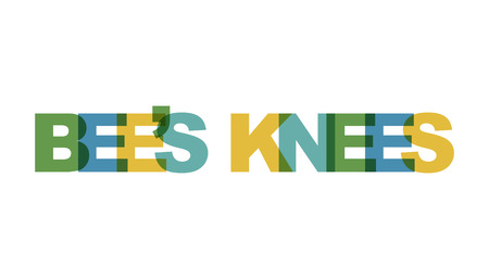 BEES KNEES, phrase overlap color no transparency. Concept of simple text for typography poster, sticker design, apparel print, greeting card or postcard. Graphic slogan isolated on white background. Vector illustration.
