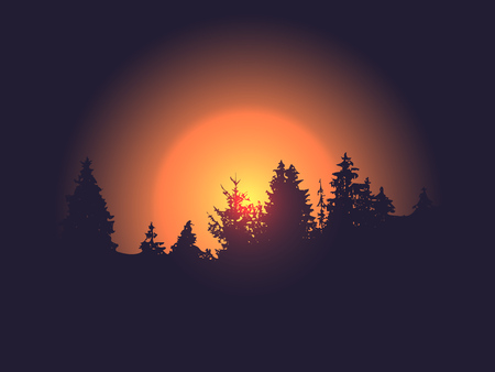Forest silhouette against the vector sun background sunset or sunrise. Trees landscape.