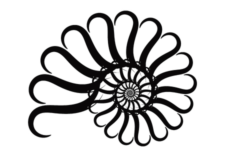 Spiral vector design elements. Abstract lines black and white. Swirl background.