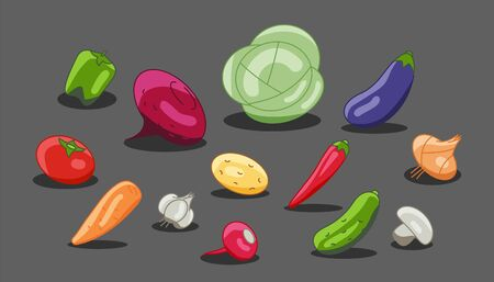 Vegetarian menu made of vegetables radish, eggplant, beets. Vector vegetable cabbage, carrots, cucumber, garlic, onions, peppers.  イラスト・ベクター素材