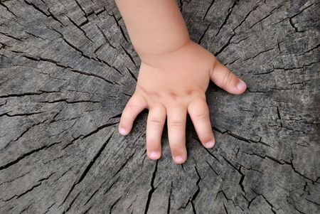 Childrens hand is located on an old stump