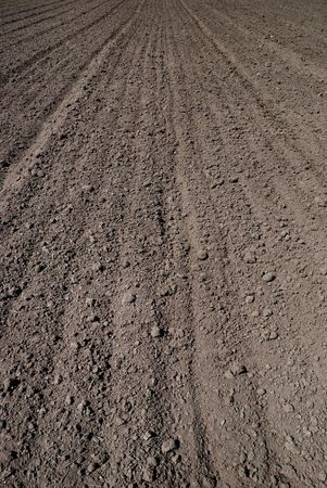 Background from the ploughed agricultural field Stock Photo - 5356025