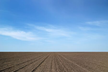 arable land: Background from an arable land and the sky Stock Photo