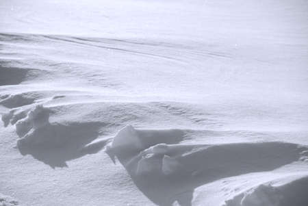 Background from snow shined with the sun photo