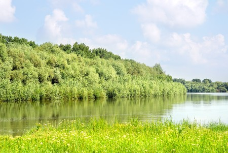 Summer landscape with green rivers, grass, trees photo