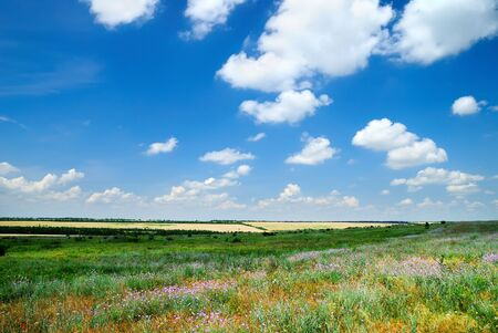 Summer landscape with the beautiful sky and fields Stock Photo - 7762880