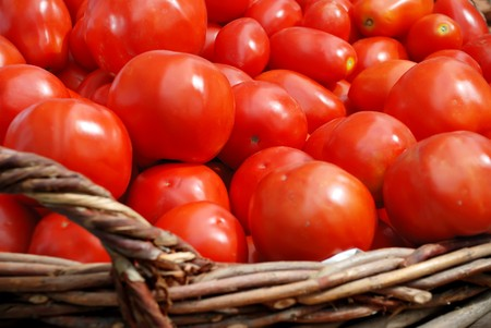 Tomatoes crop in a basket Stock Photo