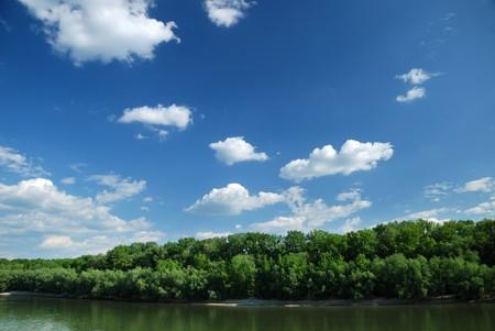 riverside trees: Summer landscape. River, riverside and trees on blue sky background