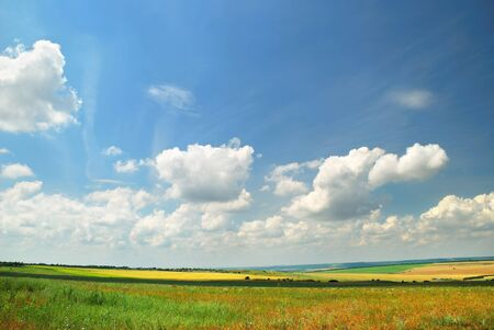 afield: Summer landscape with the beautiful sky and fields Stock Photo