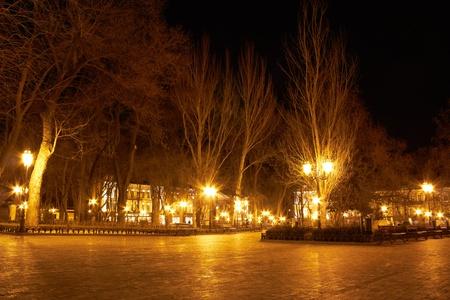 nightscene: City park at night