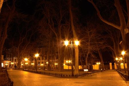 City park at night photo