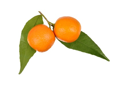 oranges with leaves isolated on white photo