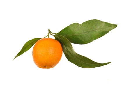 one orange with leaf isolated on white photo