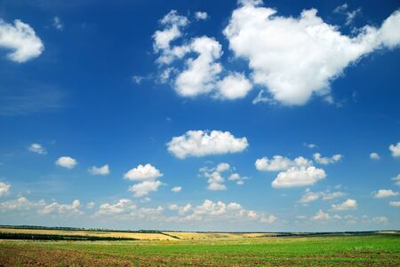 countrified: Summer landscape with the beautiful sky and fields Stock Photo