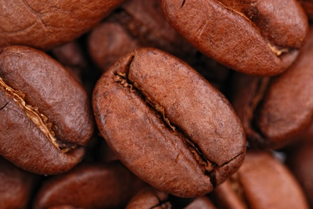 coffee beans macro photo as background photo