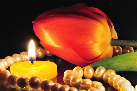Candle and tulip on dark background photo