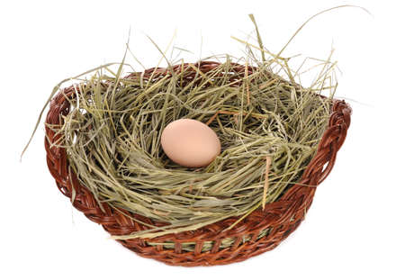 easter egg in a basket on white photo