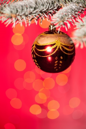 christmas ball on fir tree branch and red background photo
