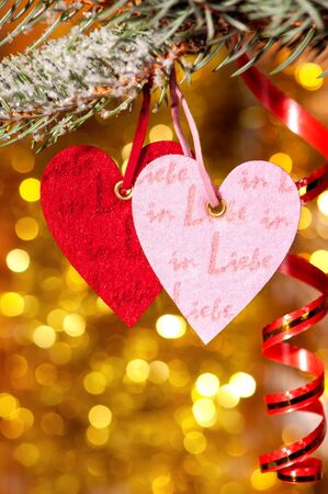 two hearts on christmas fir tree branch and golden background photo