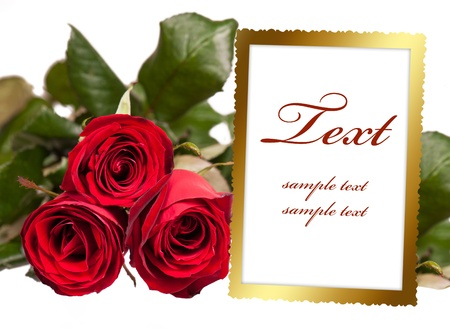 album page: empty photo frame with bouquet of roses