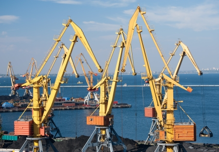 sea port and cranes photo