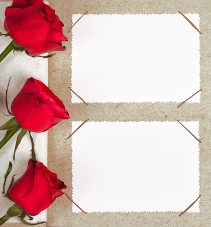 photo album with frames and roses