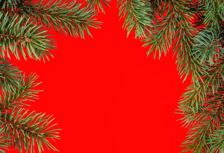 red round christmas frame from fir branches Stock Photo - 21957176
