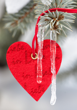 red heart toy on fir tree with snow and icicle photo