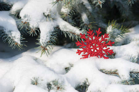 red snowflake toy in snow on fir tree photo