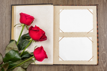 photo album: photo album and roses on wood background