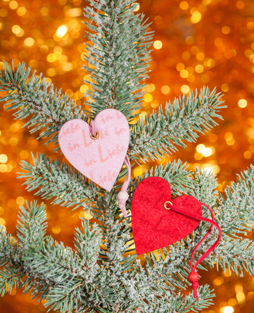 two hearts on christmas fir tree branch photo
