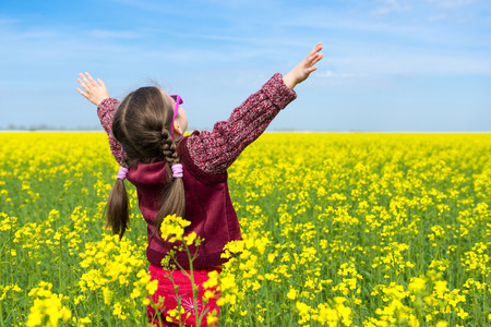 girl in a yellow field of rape. photo