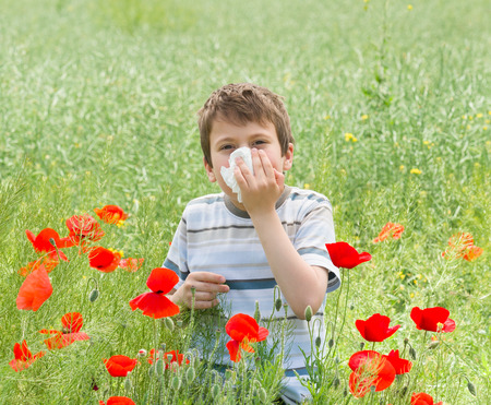 rheum: allergy boy with handkerchief on red flower meadow
