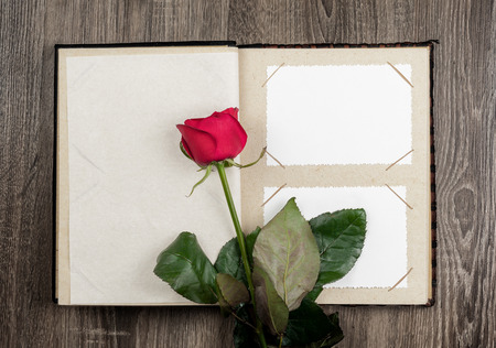 photo album and roses on wood background photo