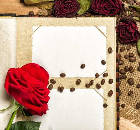 photo album and red roses on coffee seeds photo