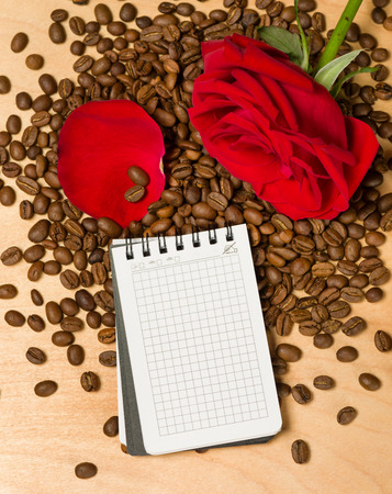 red rose and notebook on coffee seeds and wooden background photo